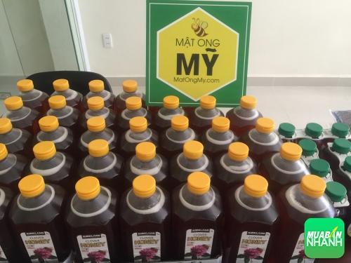 Mật ong Mỹ - sản phẩm hỗ trợ sức khỏe và tăng cường dinh dưỡng cho cơ thể.